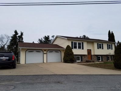 2250 Division Road, Williamsport, PA 17701 - #: WB-86774