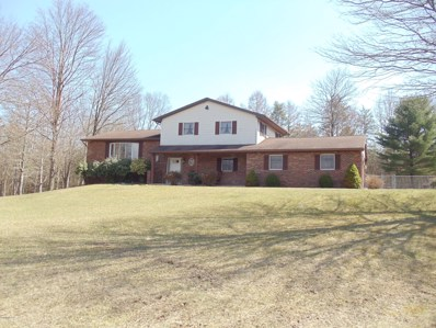 255 Evergreen Drive, Linden, PA 17744 - #: WB-86942