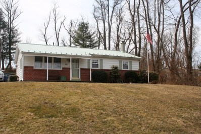 472 Old Glade Run Road, Muncy, PA 17756 - #: WB-87003