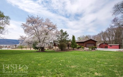 317 Bush Hollow Road, Muncy, PA 17756 - #: WB-87134