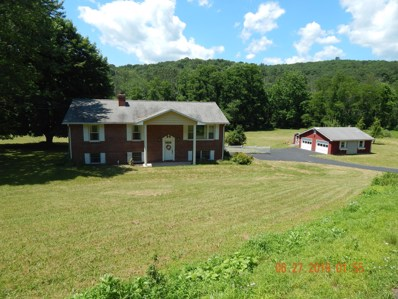 415 Green Valley Road, Hughesville, PA 17737 - #: WB-87825