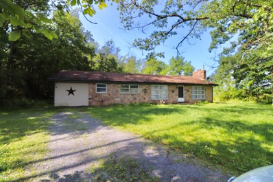 1098 Pond Road, Pennsdale, PA 17756 - #: WB-87927