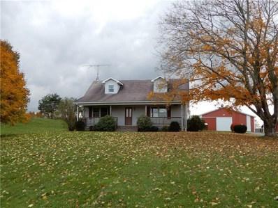 131 Olson Rd, Stoneboro, PA 16153 - #: 1370007