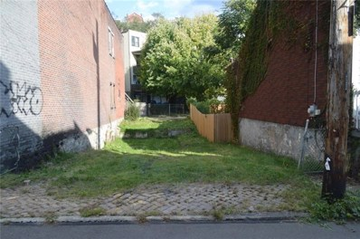 1014 Constance St, Pittsburg, PA 15212 - MLS#: 1393673