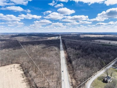 Lot N & S Us422W & Ambrosia Rd, Edinburg, PA 16143 - MLS#: 1420284