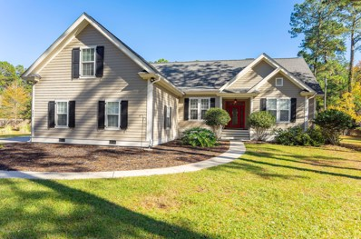 203 Green Winged Teal Drive S, Beaufort, SC 29907 - #: 159812