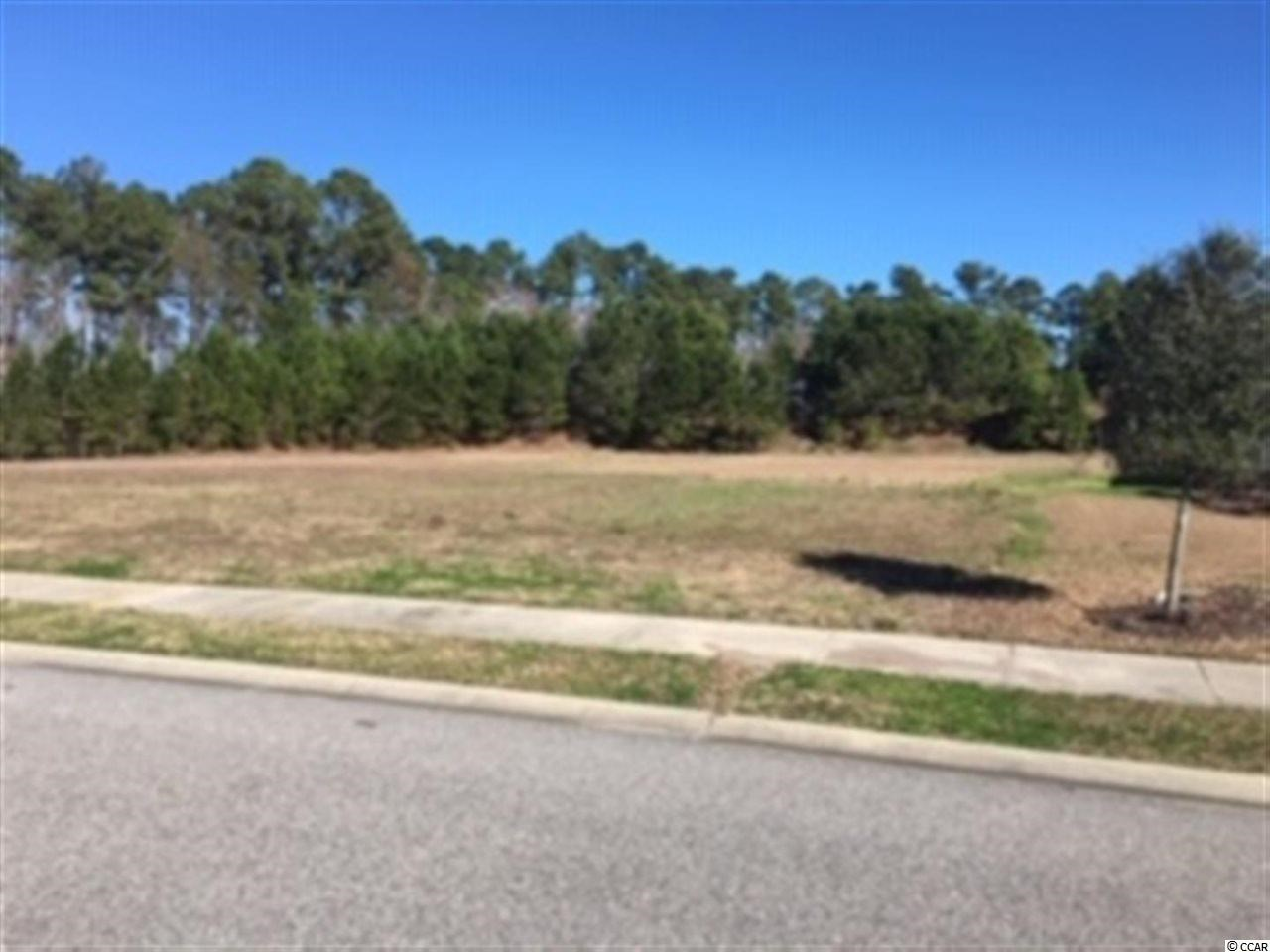 Lot 451 Wood Stork Dr., Conway