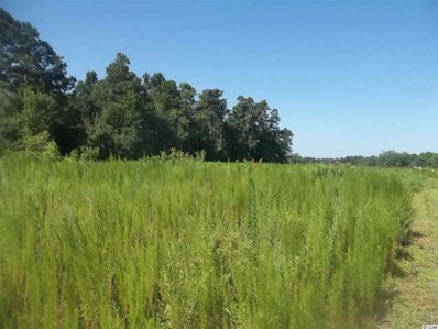Long Bay Rd, Aynor, SC 29511 - MLS#: 1715026