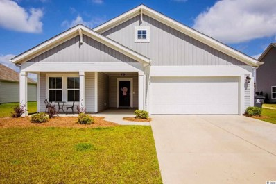917 Sewing Bee Place, Little River, SC 29566 - MLS#: 1800463