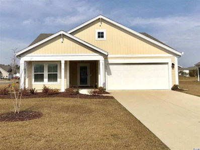 1001 Sunnymeadow Place, Little River, SC 29566 - MLS#: 1801403