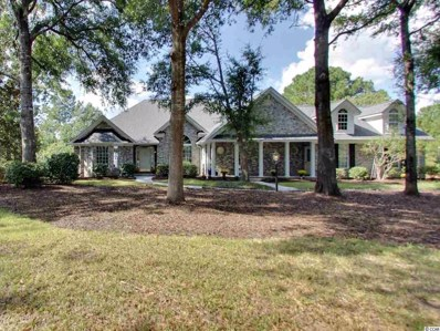 164 Black Duck Rd., Pawleys Island, SC 29585 - #: 1820154
