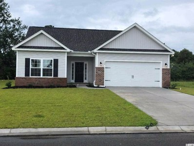 124 Palm Terrace Loop, Conway, SC 29526 - #: 1900782