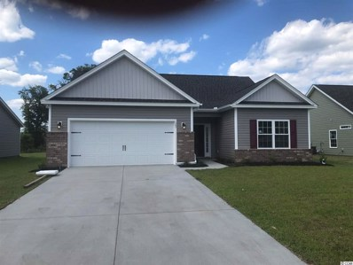 123 Palm Terrace Loop, Conway, SC 29526 - #: 1901328