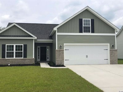 127 Palm Terrace Loop, Conway, SC 29526 - #: 1903061