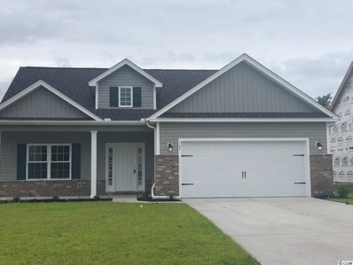 143 Palm Terrace Loop, Conway, SC 29526 - #: 1903138