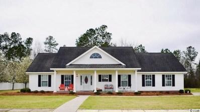 102 Adrianna Circle, Conway, SC 29526 - MLS#: 1905304
