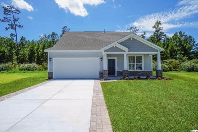 213 Camilo Ct., Myrtle Beach, SC 29579 - #: 1905714