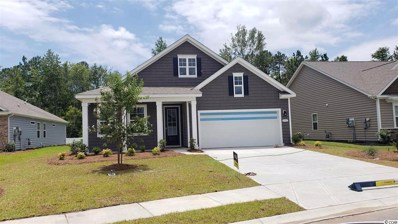 5195 Stockyard Loop, Myrtle Beach, SC 29588 - #: 1906305