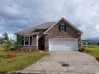2023 Angus Ct., Myrtle Beach, SC 29588 - #: 1907166