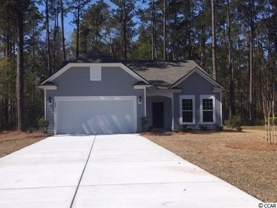 228 Tilly Ct., Conway, SC 29526 - MLS#: 1907635