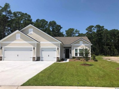 7147 Swansong Circle, Myrtle Beach, SC 29579 - #: 1909148