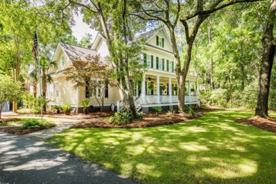 465 Elfes Field Lane, Charleston, SC 29492 - #: 18015580