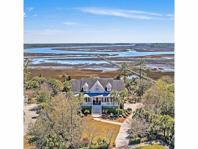 763 Bounty Square Drive, Charleston, SC 29492 - #: 19008021