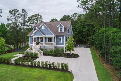 527 Little Barley Lane, Charleston, SC 29492 - #: 19019249
