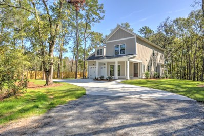 470 Yellow House Place Place, Charleston, SC 29492 - #: 19021580