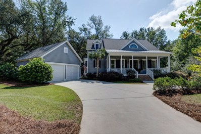 429 Elfes Field Lane, Charleston, SC 29492 - #: 19027456