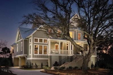 151 Brailsford Street, Charleston, SC 29492 - #: 19028420