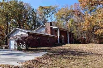 833 Pittman Ln, Spring City, TN 37381 - MLS#: 1271098