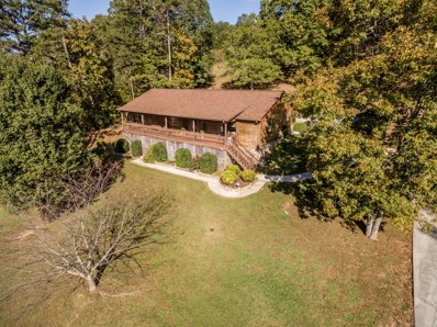 201 Riverview Dr, Dayton, TN 37321 - MLS#: 1272376