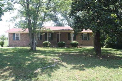 595 Broyles Rd, Spring City, TN 37381 - MLS#: 1279923