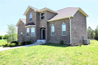 304 Europa Dr, Spring City, TN 37381 - MLS#: 1281109