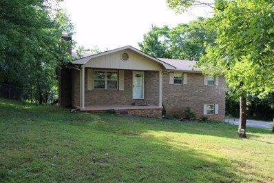 200 Laurel Dr, Spring City, TN 37381 - MLS#: 1283181