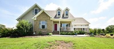 759 Pinhook Rd, Calhoun, TN 37309 - MLS#: 1284910