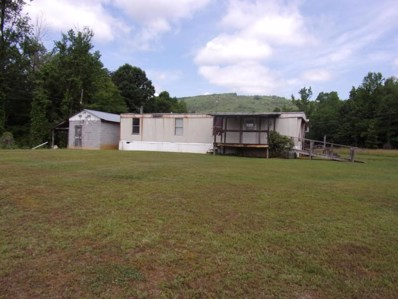 127 Snake Angel Rd, Pikeville, TN 37367 - MLS#: 1285010