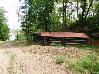 Lot 197 Maple Court, Spring City, TN 37381 - MLS#: 1286212