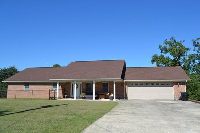 229 Scenic Hill Dr, Spring City, TN 37381 - MLS#: 1288301