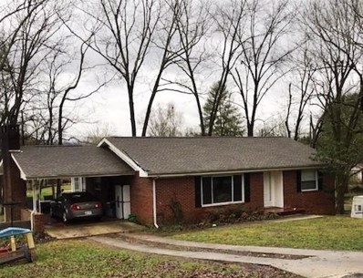 411 Pine Ave, South Pittsburg, TN 37380 - #: 1294808