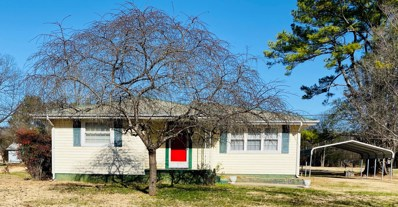 171 N Old York Hwy, Dunlap, TN 37327 - #: 1310359