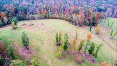 Red Williams Rd, Crossville, TN 38555 - MLS#: 1025739