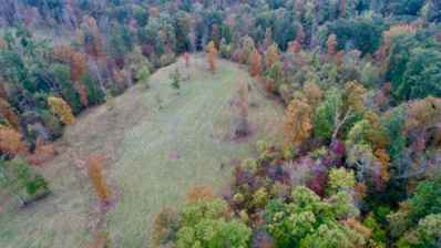 Red Williams Rd, Crossville, TN 38555 - MLS#: 1025741