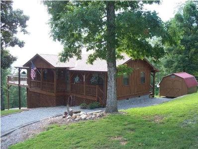 130 Oak Tree Drive, Spring City, TN 37381 - MLS#: 1038263