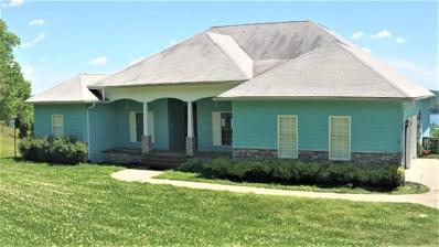 555 Spruce Drive, Spring City, TN 37381 - MLS#: 1041235