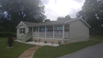 125 McGoffin Ave, Spring City, TN 37381 - MLS#: 1045157