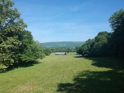 360 Lucky D Farm Rd, Pikeville, TN 37367 - MLS#: 1046588