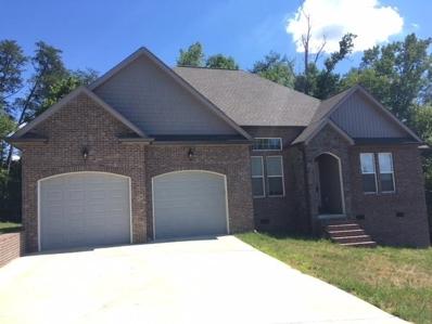 154 Elm St, Decatur, TN 37322 - MLS#: 1049905