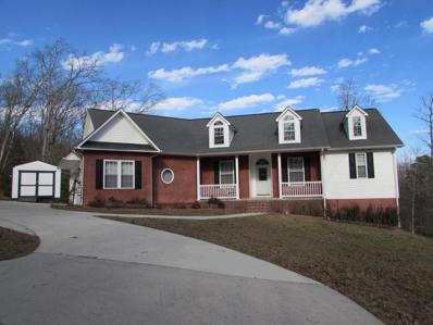 323 Chestnut Drive, Spring City, TN 37381 - MLS#: 1052671
